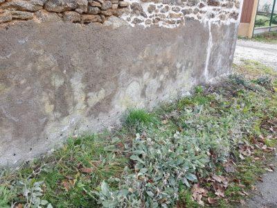 Traitement Humidité Mur Extérieur